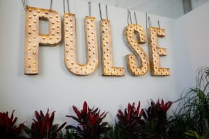 Read more about the article Scenes From PULSE Miami Beach 2017